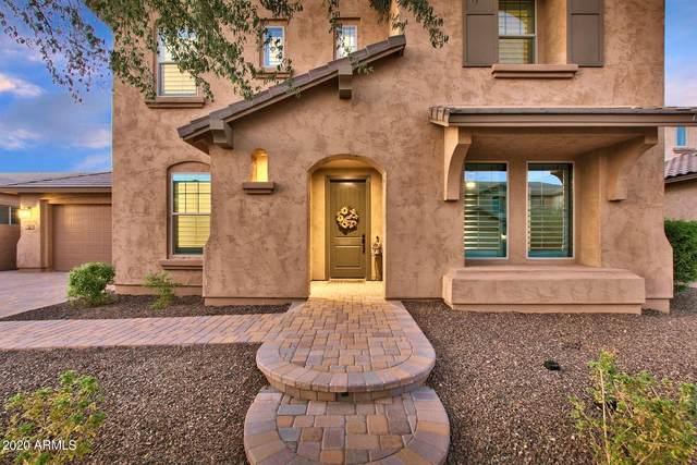 904 E Hampton Lane, Gilbert, AZ 85295 (MLS #6175766) :: My Home Group