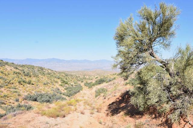 160 Acres E Cindy Way, Wikieup, AZ 85360 (MLS #6175794) :: Yost Realty Group at RE/MAX Casa Grande
