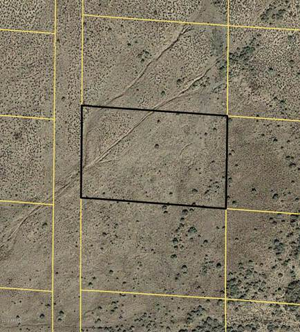 xxx X, Chambers, AZ 86502 (MLS #6175877) :: The Riddle Group
