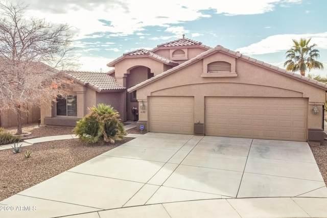 41763 W Parkhill Court, Maricopa, AZ 85138 (MLS #6175972) :: CANAM Realty Group