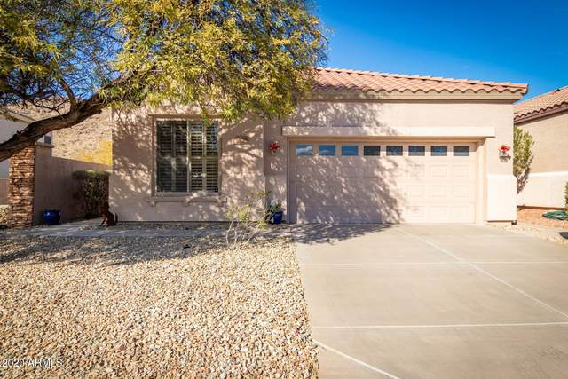 3026 W Silver Fox Way, Phoenix, AZ 85045 (MLS #6176176) :: My Home Group