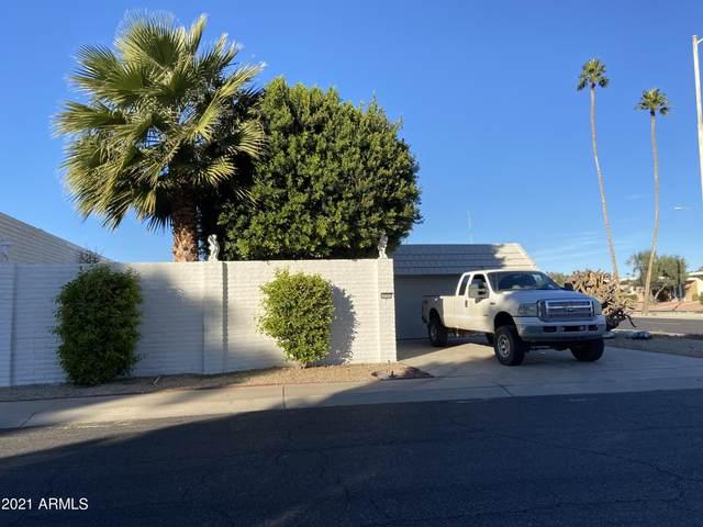 10702 W Buccaneer Way, Sun City, AZ 85351 (MLS #6176226) :: Maison DeBlanc Real Estate
