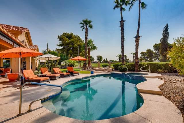 14203 W Greentree Drive S, Litchfield Park, AZ 85340 (MLS #6176242) :: Yost Realty Group at RE/MAX Casa Grande