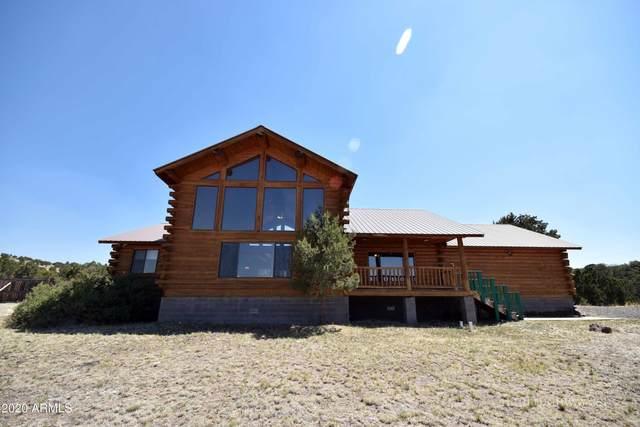 41210 Az-261 Road, Eagar, AZ 85925 (MLS #6176252) :: Yost Realty Group at RE/MAX Casa Grande