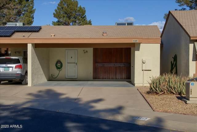 13243 N 25TH Lane, Phoenix, AZ 85029 (MLS #6176299) :: Conway Real Estate