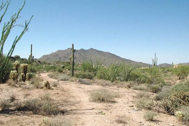 0 N Ocotillo Ridge Drive, Carefree, AZ 85377 (MLS #6176505) :: Keller Williams Realty Phoenix