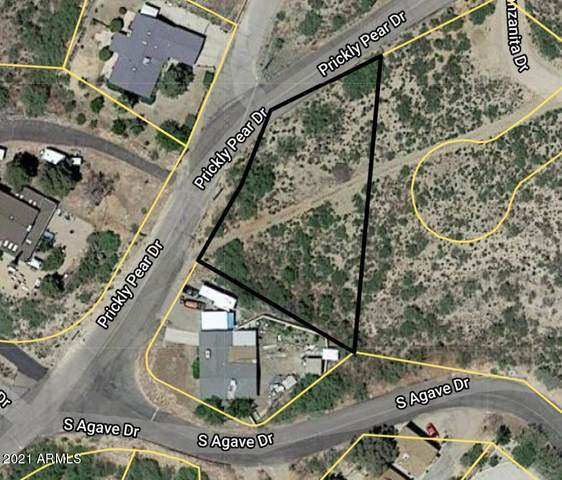 0000 Prickly Pear Drive, Globe, AZ 85501 (MLS #6177017) :: RE/MAX Desert Showcase