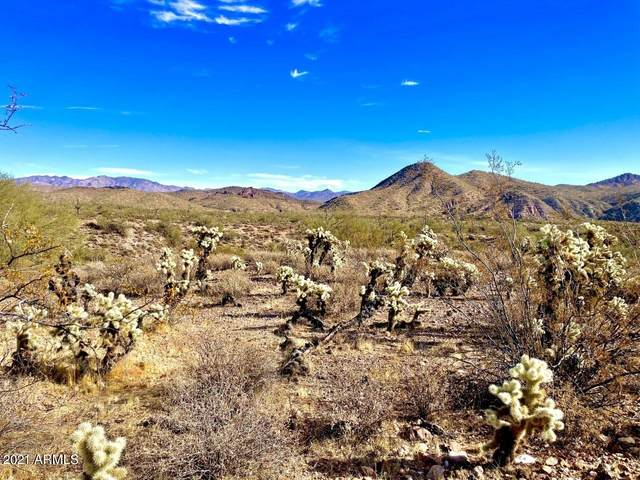 000 S Everett Bowman Road, Wickenburg, AZ 85390 (MLS #6177020) :: Long Realty West Valley