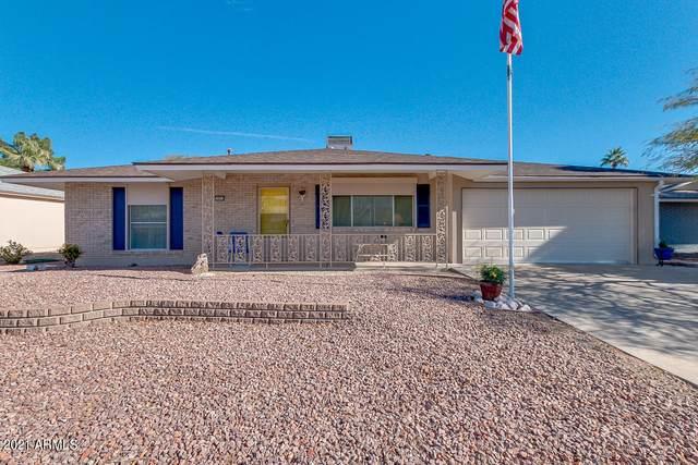 10813 W El Capitan Circle, Sun City, AZ 85351 (MLS #6177099) :: The Daniel Montez Real Estate Group