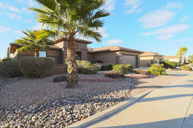 20308 N Cactus Garden Trail, Surprise, AZ 85387 (MLS #6177272) :: Yost Realty Group at RE/MAX Casa Grande
