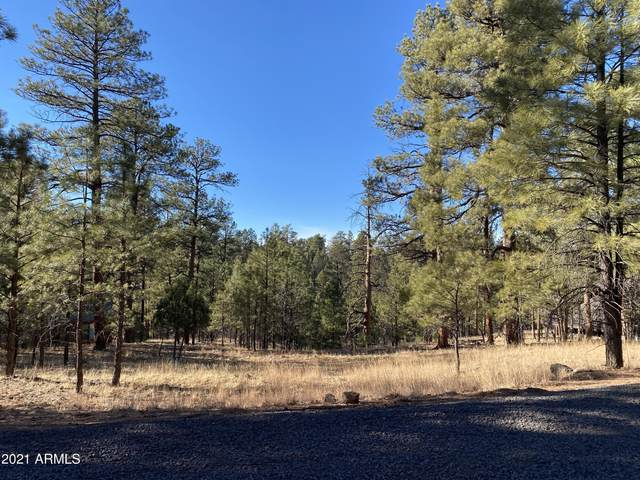 2732 Canyon View Drive, Happy Jack, AZ 86024 (MLS #6177415) :: The W Group