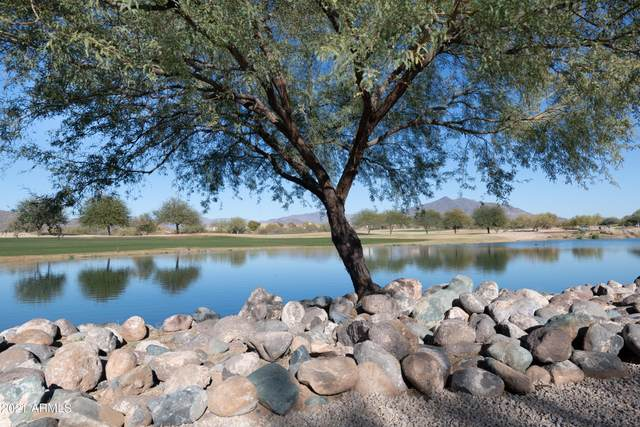 33575 N Dove Lakes Drive #2047, Cave Creek, AZ 85331 (MLS #6177495) :: Conway Real Estate