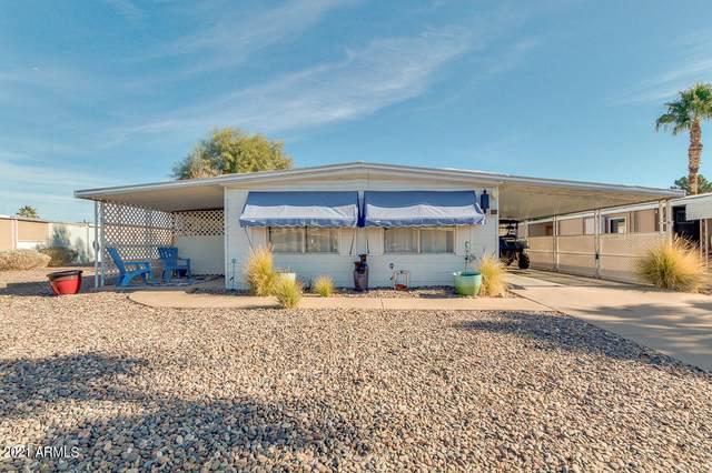 461 S Park View Circle, Mesa, AZ 85208 (#6177607) :: The Josh Berkley Team