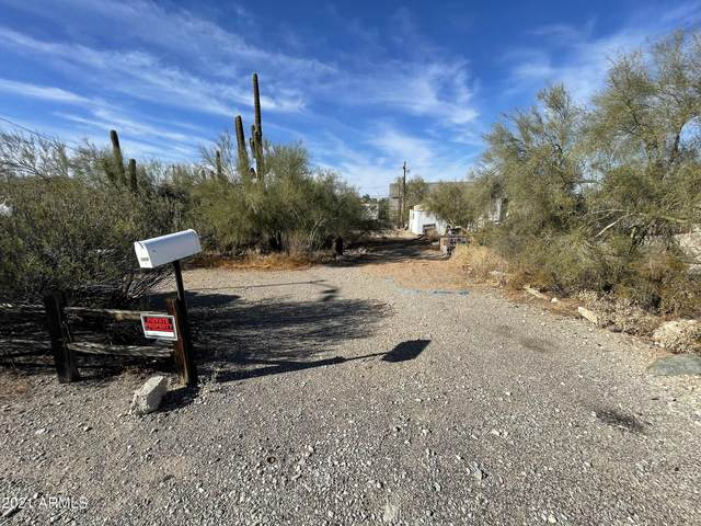 13406 N 22ND Street, Phoenix, AZ 85022 (MLS #6177649) :: The W Group
