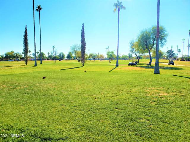 7215 E Inverness Avenue, Mesa, AZ 85209 (MLS #6177841) :: My Home Group