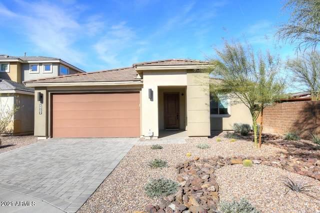 21930 N 29TH Street, Phoenix, AZ 85050 (MLS #6177863) :: The Newman Team