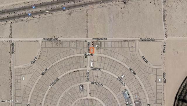 40706 E Citrus Drive, Wellton, AZ 85352 (MLS #6177887) :: The Copa Team   The Maricopa Real Estate Company