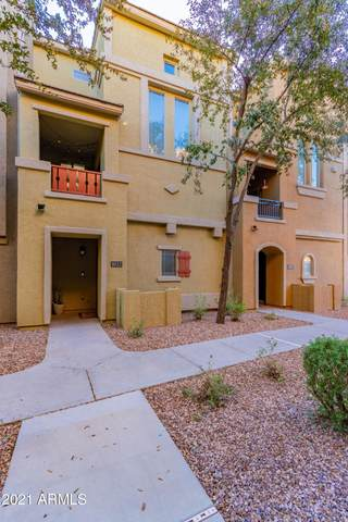 240 W Juniper Avenue #1022, Gilbert, AZ 85233 (MLS #6178141) :: Nate Martinez Team