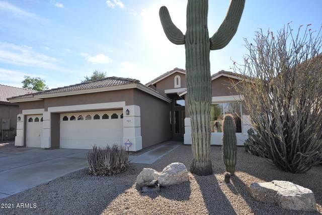 4623 E Roy Rogers Road, Cave Creek, AZ 85331 (MLS #6178335) :: Homehelper Consultants