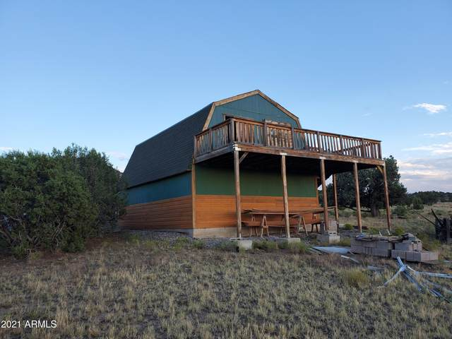 22 County Road N8606, Concho, AZ 85924 (MLS #6178426) :: Yost Realty Group at RE/MAX Casa Grande