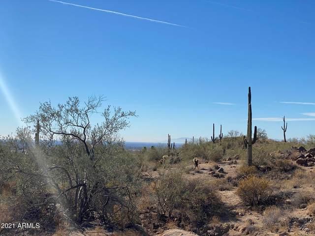 8701 E Regina Circle, Mesa, AZ 85207 (MLS #6178438) :: The Helping Hands Team