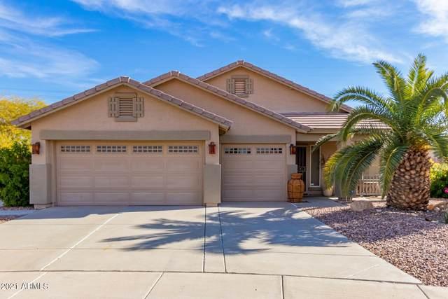 205 S 122ND Avenue, Avondale, AZ 85323 (MLS #6178453) :: Homehelper Consultants