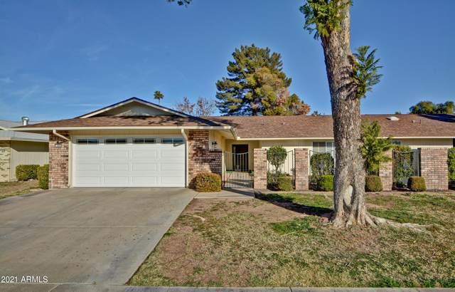 9866 W Highwood Court, Sun City, AZ 85373 (MLS #6178456) :: Conway Real Estate