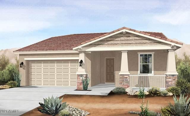 11610 W Levi Drive, Avondale, AZ 85323 (MLS #6178736) :: The Luna Team
