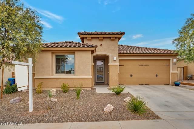 21359 N 260TH Drive, Buckeye, AZ 85396 (MLS #6178801) :: Long Realty West Valley