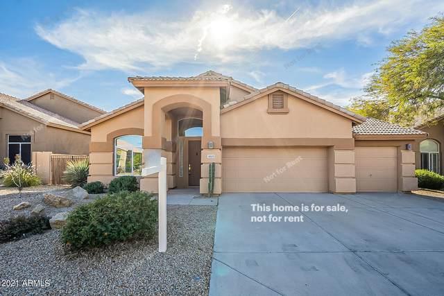 4603 E Roy Rogers Road, Cave Creek, AZ 85331 (MLS #6178853) :: Homehelper Consultants