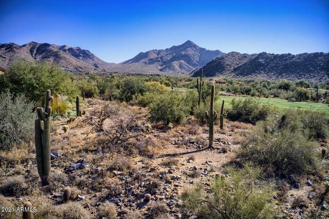 10323 E Rob's Camp Road, Scottsdale, AZ 85255 (MLS #6178922) :: Yost Realty Group at RE/MAX Casa Grande