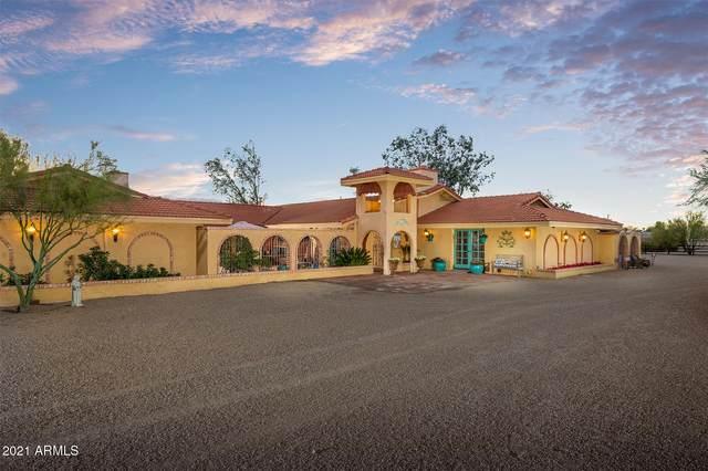 6480 S Alameda Road, Gold Canyon, AZ 85118 (MLS #6179004) :: Yost Realty Group at RE/MAX Casa Grande