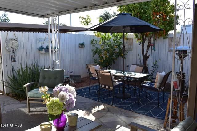 1730 E Dunbar Drive, Tempe, AZ 85282 (MLS #6179014) :: Conway Real Estate