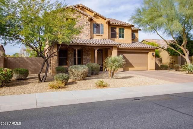 15644 W Campbell Avenue, Goodyear, AZ 85395 (MLS #6179055) :: The Luna Team