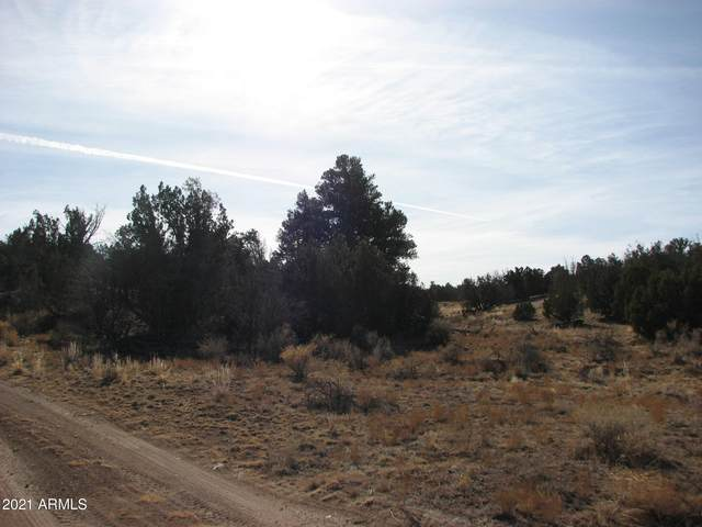 Lot 255 Chevelon Canyon Ranch, Heber, AZ 85928 (MLS #6179261) :: The Ellens Team