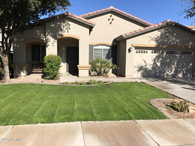 13518 W Merrell Street, Avondale, AZ 85392 (MLS #6179539) :: Yost Realty Group at RE/MAX Casa Grande