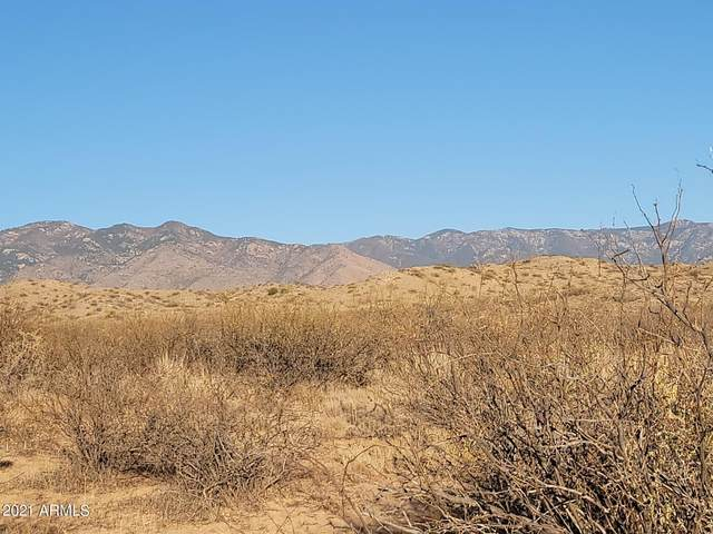 36 Acres W Indian Pony Road, Willcox, AZ 85643 (MLS #6179557) :: The Copa Team | The Maricopa Real Estate Company