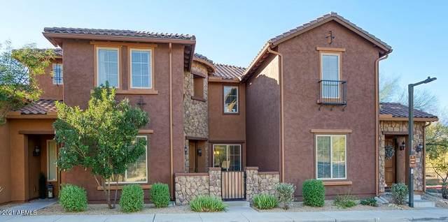 3859 E Cat Balue Drive, Phoenix, AZ 85050 (MLS #6179593) :: The Newman Team