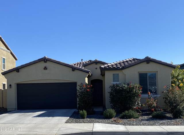 5333 N 187TH Lane, Litchfield Park, AZ 85340 (MLS #6179690) :: The Property Partners at eXp Realty