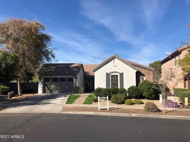 15446 W Eugene Terrace Terrace, Surprise, AZ 85379 (MLS #6179691) :: Yost Realty Group at RE/MAX Casa Grande