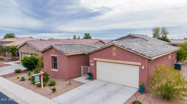 42727 W Darter Drive, Maricopa, AZ 85138 (MLS #6179694) :: Yost Realty Group at RE/MAX Casa Grande