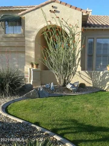 9537 W Pinnacle Vista Drive, Peoria, AZ 85383 (MLS #6179765) :: West Desert Group | HomeSmart