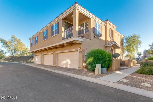4763 E Red Oak Lane #101, Gilbert, AZ 85297 (MLS #6179947) :: Klaus Team Real Estate Solutions