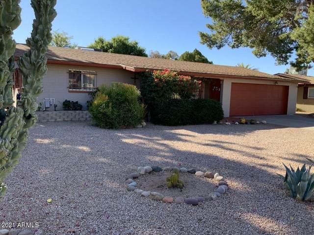 5349 E Adobe Road, Mesa, AZ 85205 (MLS #6179966) :: Yost Realty Group at RE/MAX Casa Grande