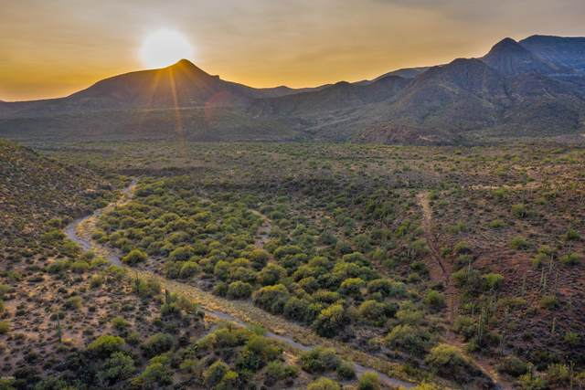 45100 N Cottonwood Canyon Road, Cave Creek, AZ 85331 (MLS #6180110) :: The Riddle Group