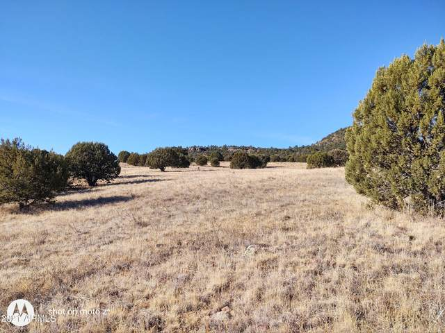 102 S Mule Track Road, Young, AZ 85554 (MLS #6180133) :: The Laughton Team