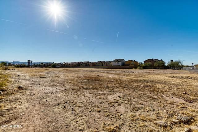 245 W Wier Avenue, Phoenix, AZ 85041 (MLS #6180162) :: Long Realty West Valley