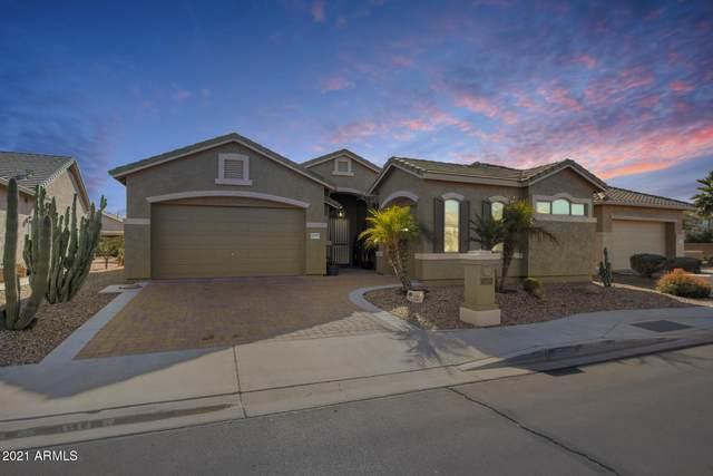 18275 W Stinson Drive, Surprise, AZ 85374 (MLS #6180186) :: My Home Group