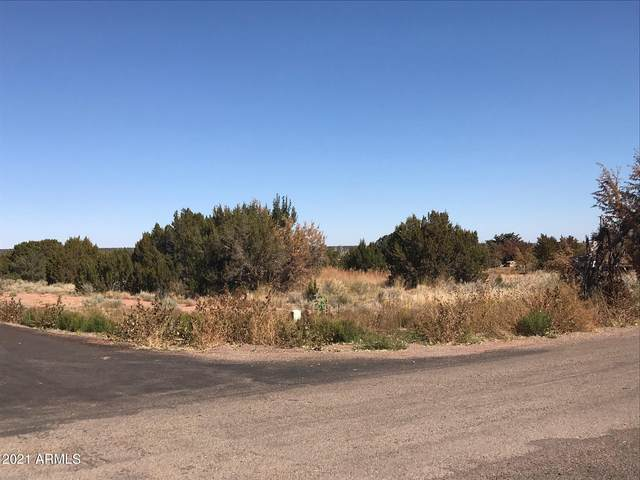 Lot 9 Country Club Drive, Snowflake, AZ 85937 (MLS #6180188) :: The Riddle Group