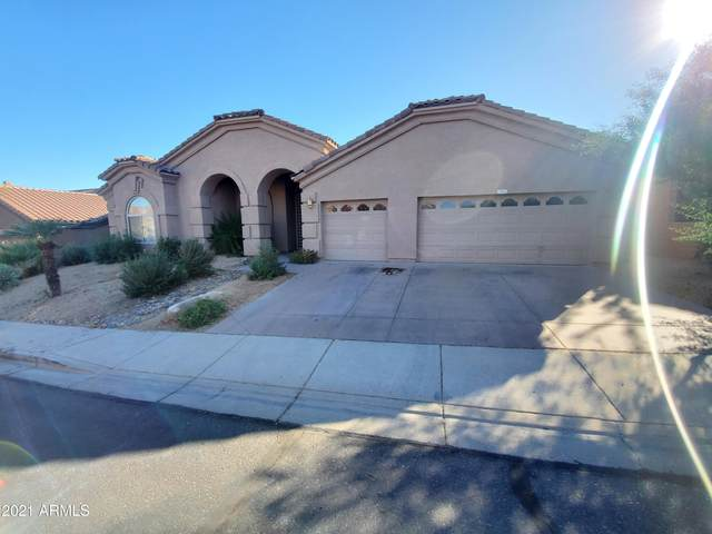 1941 E Marilyn Road, Phoenix, AZ 85022 (MLS #6180234) :: Yost Realty Group at RE/MAX Casa Grande